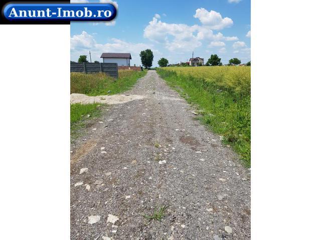 Anunturi Imobiliare Terenuri-intravilan-stradal-particular-utilitati