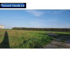 Anunturi Imobiliare 20 Km de Bucuresti,Tartasesti,teren 504 mp