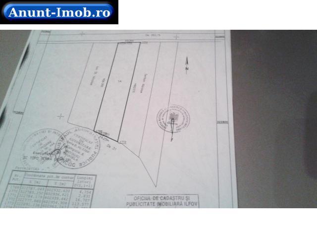 Anunturi Imobiliare Terenuri Balaceanca-Cernica