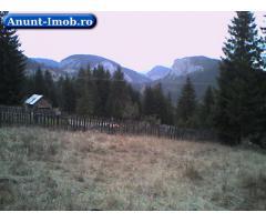 Anunturi Imobiliare teren in zona Lacul Rosu