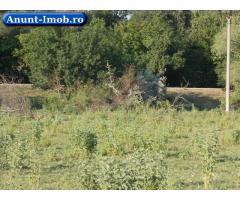 Anunturi Imobiliare Vand teren in Delta Dunarii, sat Periprava
