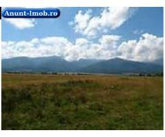 Anunturi Imobiliare Teren intravilan pe Valea Avrigului, judetul Sibiu