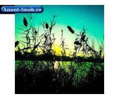 Anunturi Imobiliare 1011 m.Teren Intravilan Lacul Colentina din Buftea