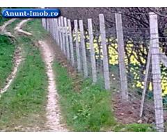Anunturi Imobiliare Vand livada in Oradea 1000 mp zona Podgoria