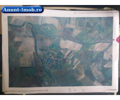 Anunturi Imobiliare Terenuri agricole 4,2 ha