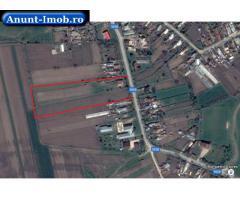 Anunturi Imobiliare 18.000 mp teren intravilan-40Km de Buc. si 15km de Ploiesti