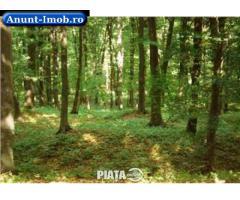 Anunturi Imobiliare Vand padure stejar Mehedinti 2200 Ha
