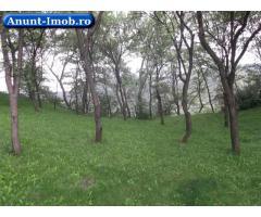 Anunturi Imobiliare Propietar vand teren intravilan oras Maneciu Ungureni Prahov