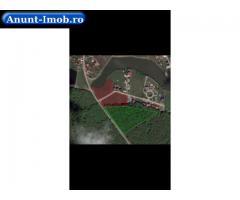Anunturi Imobiliare Asfalt, lac, padure