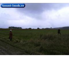 Anunturi Imobiliare Teren extra- si intravilan Manastirea Dragomirnei 3000mp