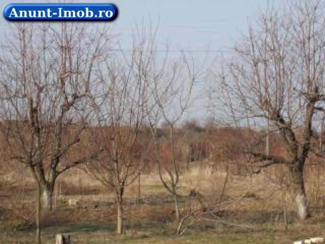 Anunturi Imobiliare vand 23.000mp teren intravilan agro-industrial
