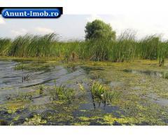 Anunturi Imobiliare Vand teren concesionat 736Ha, Delta Dunarii