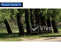 Anunturi Imobiliare Bucium - Plopii fara sot, teren de vanzare 1220 mp, drum acc