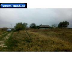 Anunturi Imobiliare Teren intravilan, parcelat, in Tulcea, zona Baltag (Mineri)