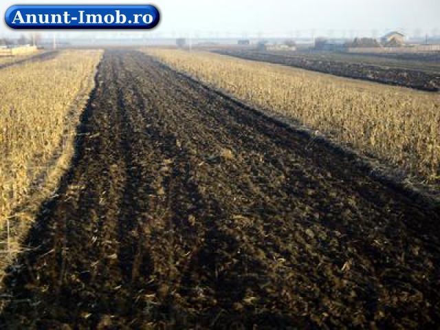 Anunturi Imobiliare Cumpar terenuri agricole in Jud Vaslui