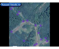 Anunturi Imobiliare Vand  teren, deal, livada pruni 9 hectare