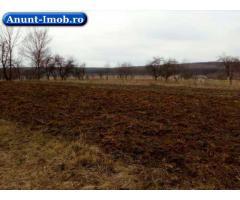 Anunturi Imobiliare Loc de casa in Lipoveni, Suceava 3200mp