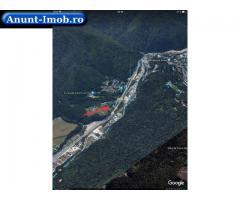 Anunturi Imobiliare OCAZIE, Vanzare teren, SINAIA-Cumpatu, 9.801mp, Proprietar.