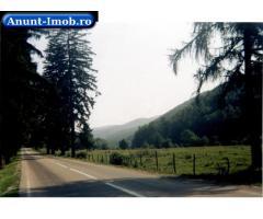 Anunturi Imobiliare Vand teren in Dambovita