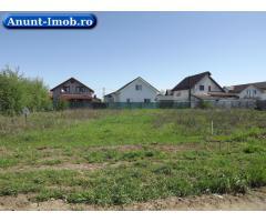 Anunturi Imobiliare Teren pentru Casa Ta in comuna Berceni