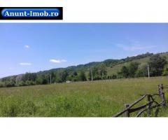 Anunturi Imobiliare teren intravilan -10 parcele 2000 mp langa padure