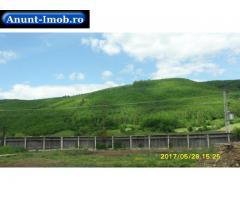 Anunturi Imobiliare Vand Imobil in com. Ghelinta, jud. Covasna 105.000 EURO
