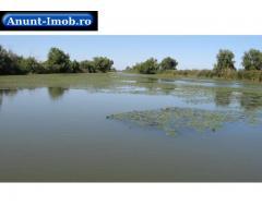 Anunturi Imobiliare 736 hectare Delta Dunarii, C.A.Rosetti