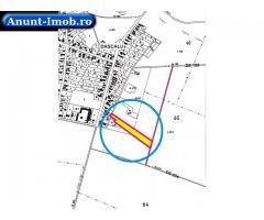 Anunturi Imobiliare Vand teren Dascalu,str Liliacului, intre vii, 550 si 700 mp.