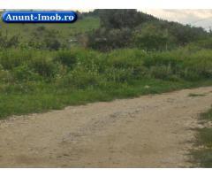 Anunturi Imobiliare Teren 5 ha, zona iesire Sura Mare spre Slimnic