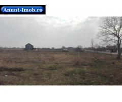 Anunturi Imobiliare Teren intravilan 5000 mp, Vetis, Satu Mare