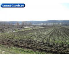 Anunturi Imobiliare Teren agricol (2 loturi) 4951 mp, Strehaia