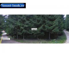 Anunturi Imobiliare Teren 10.000 mp, Soseaua Zamora, Sinaia, Judet Prahova