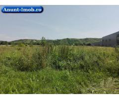 Anunturi Imobiliare Teren 7.396 mp, Aninoasa, Judet Dambovita
