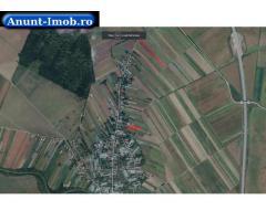 Anunturi Imobiliare Teren agricol 4,600 mp, Bara, Balta Doamnei