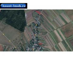 Anunturi Imobiliare Teren 3.750 mp, Balta Doamnei, jud. Prahova