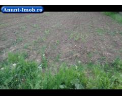 Anunturi Imobiliare Vanzare teren arabil in Comuna Gheorghe Doja, Jud. Ialomita