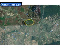 Anunturi Imobiliare Teren extravilan 506,100 mp, Zabrani, Arad
