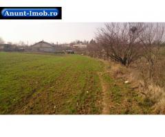 Anunturi Imobiliare Teren 8036 mp, intravilan arabil, Butimanu, Dambovita