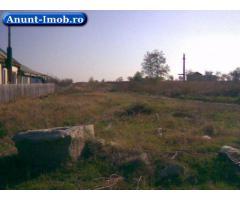 Anunturi Imobiliare Intravilan agri Ilfov,,20 km de Buc,6.528 mp, bun pt orice!