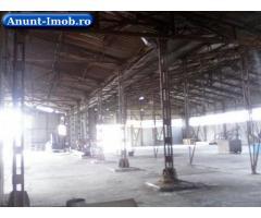 Anunturi Imobiliare Vand fabrica de cherestea langa Hateg
